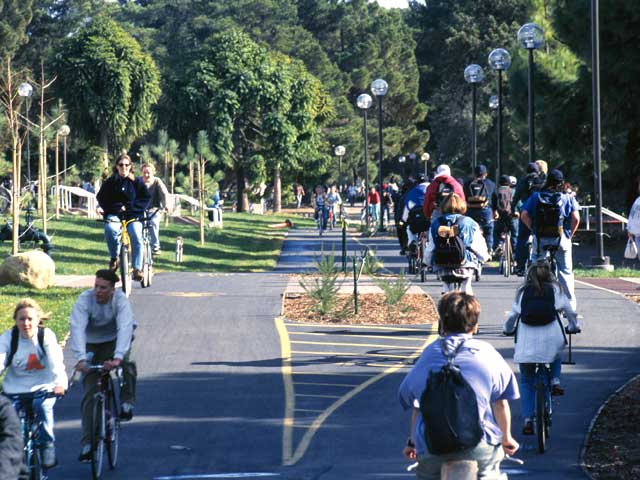 Beautifully manicured bike paths provide access to campus facilities, as well as to nearby off-campus amenities